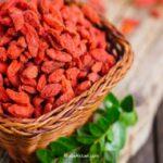 Goji Beryy meyvesinin faydaları neler mutluluk meyvesi olarak biliniyor!