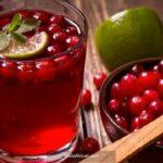Kızılcık meyvesinin faydaları neler saymakla bitmiyor!